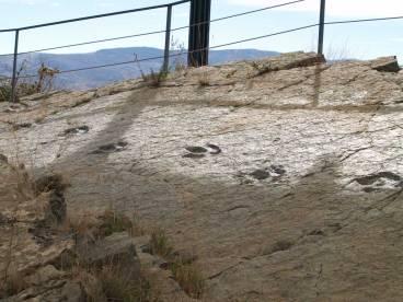Yacimiento de huellas de dinosaurios
