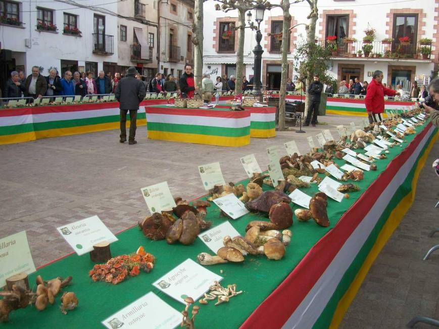Exposición micológica Ezcaray