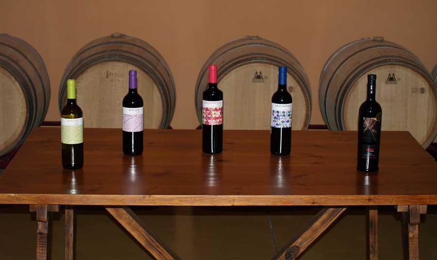 Colección de vinos Bohedal
