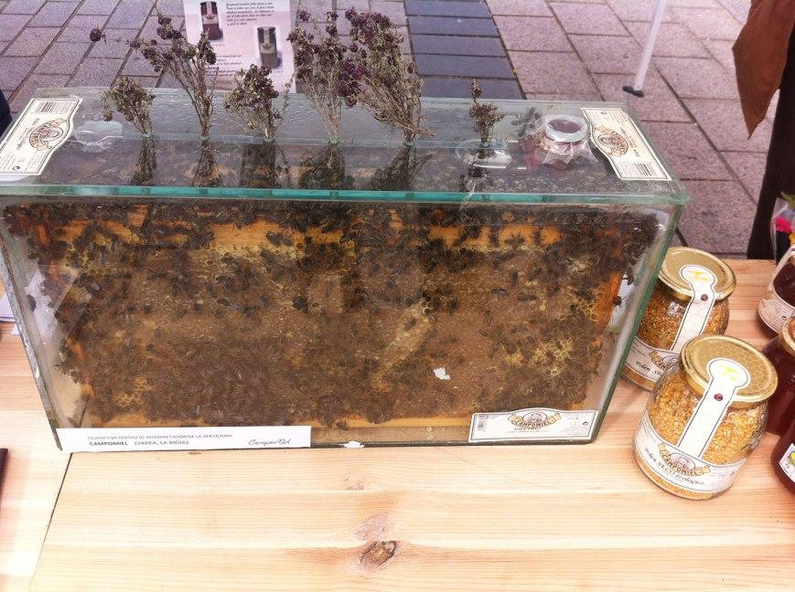 colmena con abejas en producción de miel