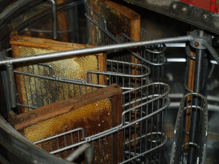 centrifugadora-para-extracción-de-miel